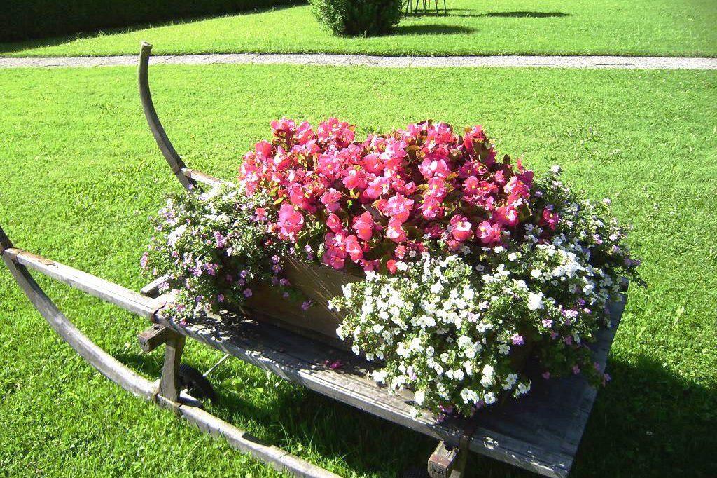 Blumen im Garten von Haus Seeblick