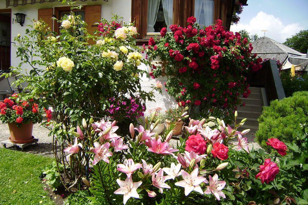 Blumenschmuck im Garten von Haus Seeblick in Bad Wiessee am Tegernsee